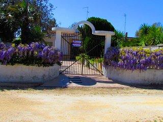Villa 8posti salento LE 250m mare - Frigole vacation rentals