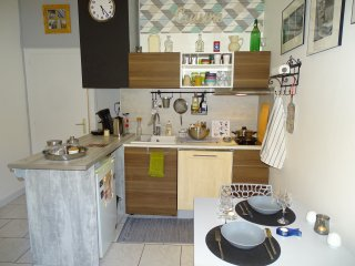 Bright apartment  view on River Saône - Lyon vacation rentals