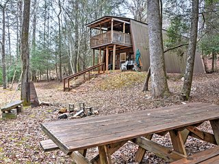 NEW! 'Adams Family' 3BR Cleveland Cabin on Creek! - Cleveland vacation rentals