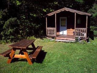 Log Cabin adjacent to hiking/biking trails in the Hammond Hill State Forest - Freeville vacation rentals