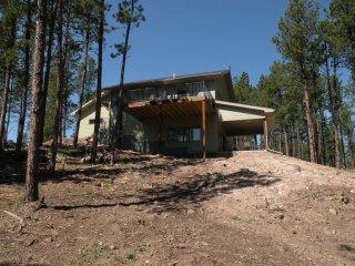 Castle Rock Pines - Custer vacation rentals