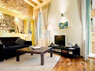 PICASSO BORN - Barcelona vacation rentals