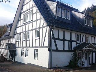 Cozy 2 bedroom Apartment in Netphen - Netphen vacation rentals
