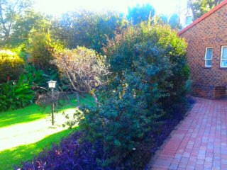 Jeds lovely cottage with pool. A luxurious home away from home - Bryanston vacation rentals