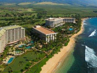 Hyatt Ka'anapali Beach - 2 Bedroom - Lahaina vacation rentals