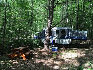 Camper Cabin in Private Wooded Campsite w/electric, AC, propane stove - Freeville vacation rentals