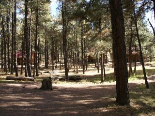 Nice Cabin with Deck and Housekeeping Included - Alpine vacation rentals