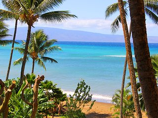 Valley Isle Resort 401 & 402 - Lahaina vacation rentals