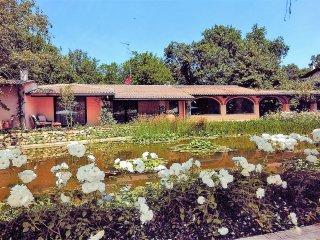 Bright Villa with Internet Access and A/C - Badia Al Pino vacation rentals