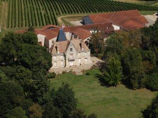 Chateau en location parfait pour decouvrir l histoire de marguerite duras - Baleyssagues vacation rentals