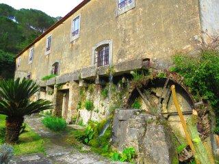 Perfect 1 bedroom Porto de Mos House with Internet Access - Porto de Mos vacation rentals