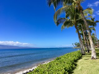 Puamana Surf! Don't Miss Out! - Lahaina vacation rentals