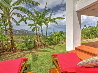 NEW! 1BR St. Thomas Apartment in Ideal Location! - Saint Thomas vacation rentals