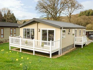 CLEARWATER LODGE, all ground floor, communal grounds, two bedrooms, near New - New Quay vacation rentals