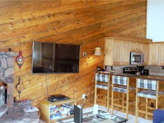 Comfortable Ketchum Condo rental with Deck - Ketchum vacation rentals