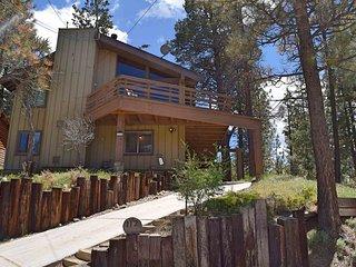 Timber Haus - Big Bear City vacation rentals