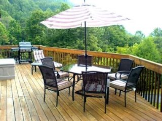STUNNING 50 MILE Mountain Views, Fireplace, Lg Deck, Jet Tub - Asheville vacation rentals