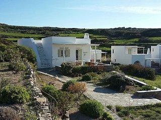 Luxury country side villa on Paros island in Greece - Parikia vacation rentals
