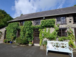 Charming 3 bedroom Cynghordy Cottage with Television - Cynghordy vacation rentals