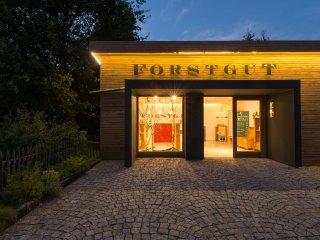 FORSTGUT - Romantisches Feriendorf im Bayerischen Wald - Bibergrund - Regen vacation rentals