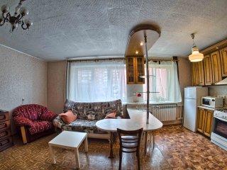 Уютная студия в самом центре города - Nizhniy Novgorod vacation rentals