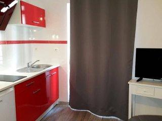 Appartement Rodez proche du musée Soulages - Rodez vacation rentals