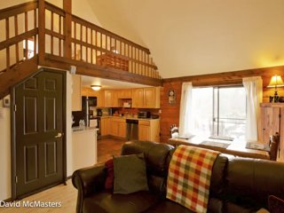Secluded, Pet-Friendly, Relaxing Log Cabin (Wifi) - Berkeley Springs vacation rentals