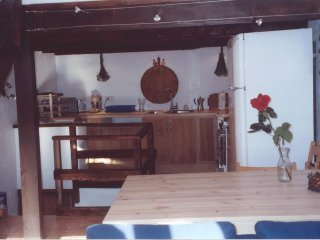 quiet holiday flat with large terrace in a medieval village - Breil-sur-Roya vacation rentals