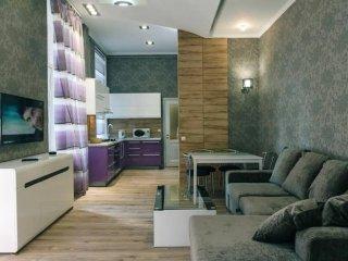 Two-room. 6 Zankovetskoi. Near a Khreschatyk - Kiev vacation rentals
