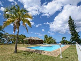 Paradis - Le Carbet vacation rentals