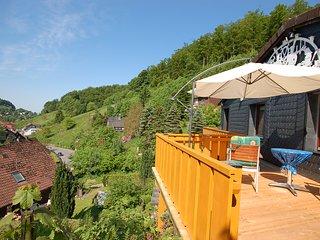 Ferienwohnung Harzblick für 2-4 Personen - Osterode am Harz vacation rentals
