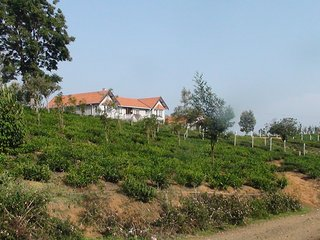 Cozy Bungalow with Internet Access and Wireless Internet - Coonoor vacation rentals