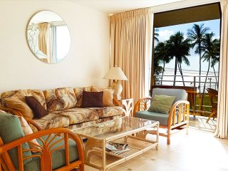 IS406 Affordable Paradise! 1 bd 1 ba, Double Lanai Full Ocean View' Pool, Bbq - Wailea vacation rentals