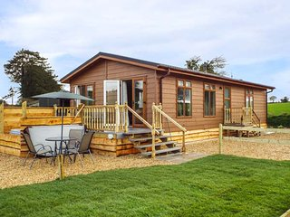 WHITEY TOP LODGE, stunning views, hot tub, open plan, near Damerham, Ref 948951 - Damerham vacation rentals