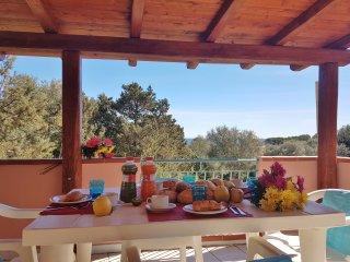DOMOS MAISON PINTADA-Appartamento a 150 mt dal mare - Sos Alinos vacation rentals
