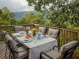 Views! Views! This Farmhouse French style home will have you coming back! - Black Mountain vacation rentals
