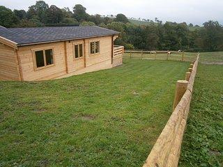 Beautiful 4 bedroom Cabin in Westbury - Westbury vacation rentals