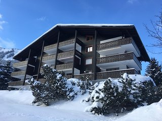 Perfect Condo with Television and DVD Player - Morgins vacation rentals