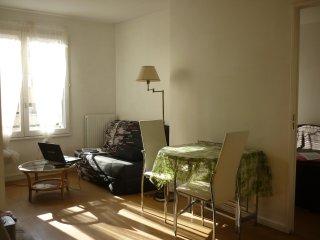 2 pièces spacieux et confortable  sur square ,proche de Paris au pied du metro. - Créteil vacation rentals