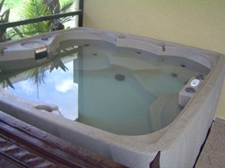 4 Bedroom 3 Bath Pool Home with Separate Jacuzzi. 559OBC - Image 1 - Orlando - rentals