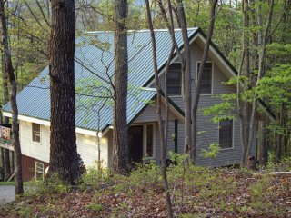 Secluded Georgia Mountain Cabin. In the heart of motorcycling territory. - Suches vacation rentals