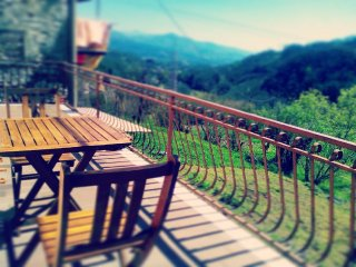 casale immerso nel verde della Lunigiana vicino cinque terre - Pontremoli vacation rentals