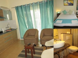 14) 1 Bedroom Modern Furnished Apartment, Arpora sleeps 3 - Arpora vacation rentals