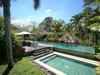 Villa Kanti Ubud Bali - Ubud vacation rentals