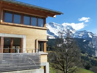 Chalet Dillon - Wengen vacation rentals
