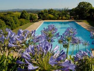 Quinta de Santa Teresinha - Villa with salt water swimming pool and gardens - Serta vacation rentals