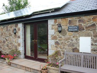 Nice Cottage with Internet Access and Television - St Kew vacation rentals