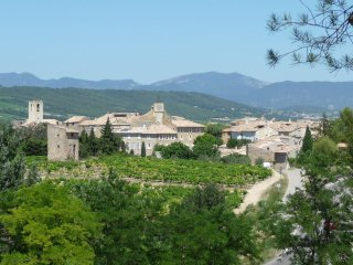 Provencal Village House (2-4 persons) - Buisson vacation rentals