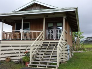 Beautiful Studio with Deck and Internet Access - Honomu vacation rentals