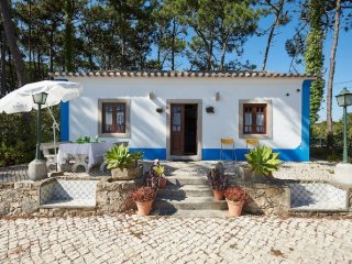 Aguda Beach Tradicional Portuguese House - Sintra vacation rentals